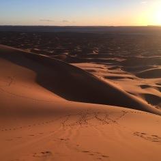 Maroc Merzouga 04